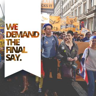 We Demand 3 Dec 2018 (by Liberal Democrats)